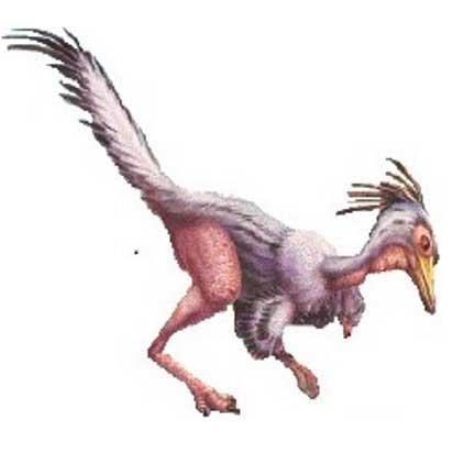 پرنده ماقبل تاریخ