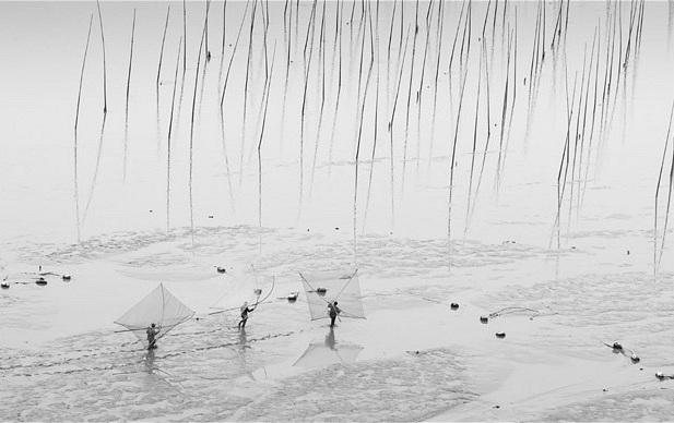 برگزیدهای از برترین عکسهای رقابت عکاسی جهان سونی