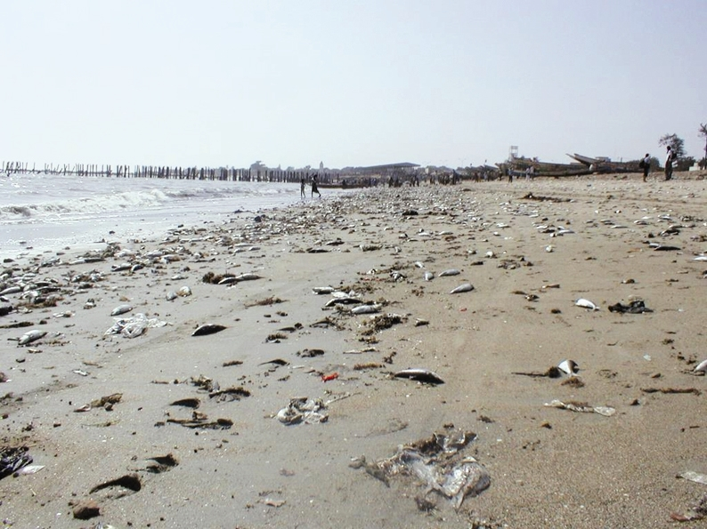 آلودگی - خلیج فارس