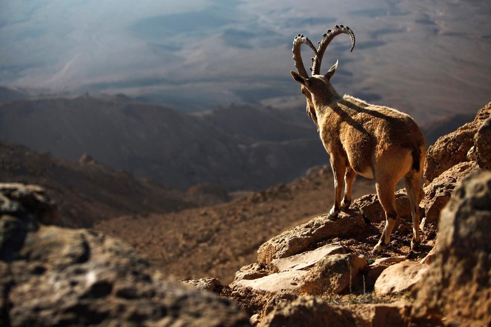 تصاویری از زیباییها و زشتیهای زمین به مناسبت روز جهانی زمین