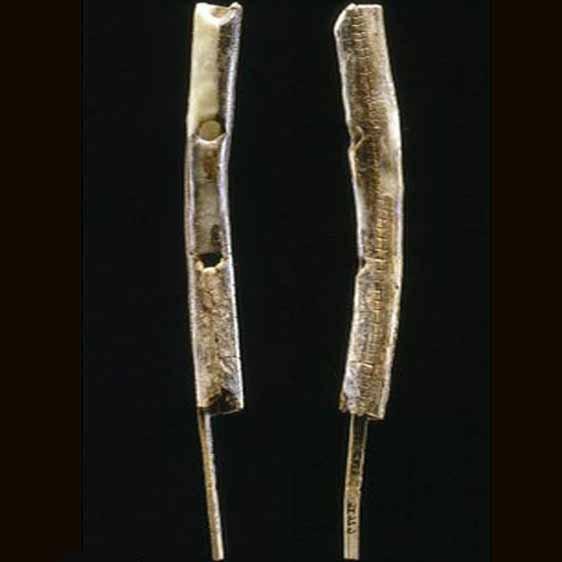 قدیمی ترین ابزار موسیقی که قدمت آن به 43 هزار سال پیش می رسد