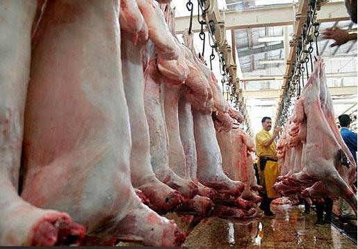 پشت پرده واردات گوشت