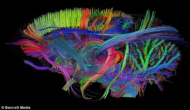 ترسیم نقشه از پیچیدهترین پدیده جهان