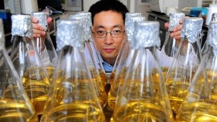 china science