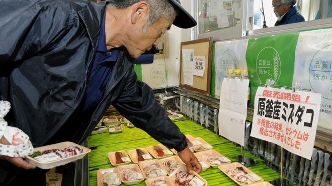 اولین صید ژاپن در آب های محدوده فوکوشیما