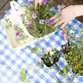 چطور یک سبد گل را تزیین کنیم؟
