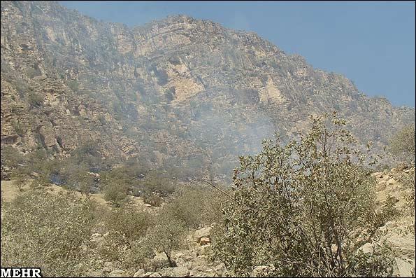 آتشسوزی در مراتع کوهدشت
