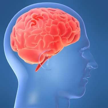رمزگشایی از کدهای مغزی مرتبط با تلفظ حروف صدا دار