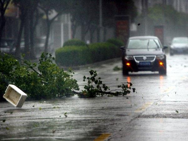 Typhoon Haikui