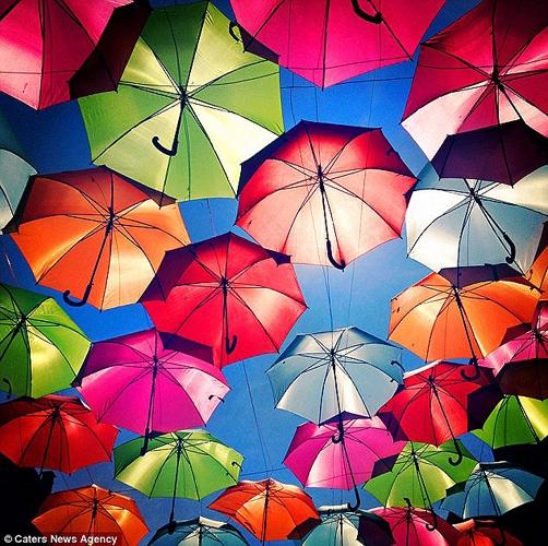 چترهای معلق در آسمان پرتغال؛ این تصاویر را از دست ندهید