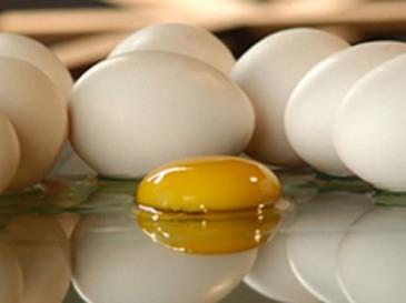 مصرف تخممرغ و تنگی عروق