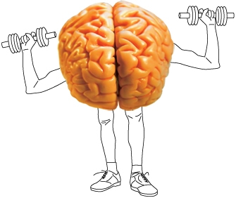 http://images.hamshahrionline.ir/images/2012/9/12-9-11-145920brain-fitness.bmp