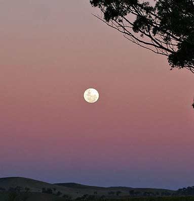 فردا، ماه کامل در آسمان