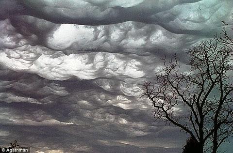 ثبت گونهای جدید از ابرها پس از 61 سال