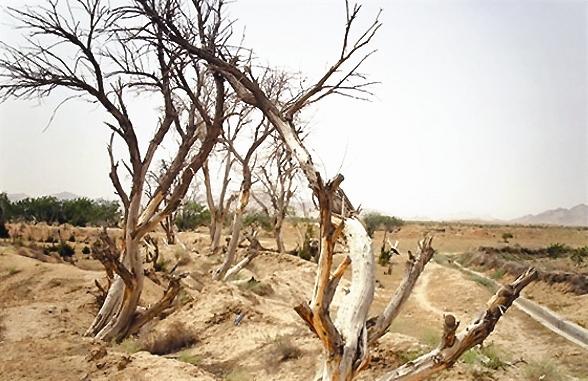 طلیعه خشکسالی در زمستان