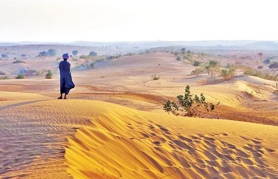 بیابان تار در هند
