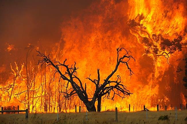 آتش سوزی گسترده استرالیا را محاصره کرد