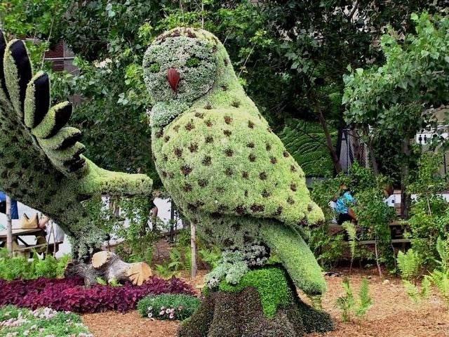 چطور درست باغبانی کنیم؟