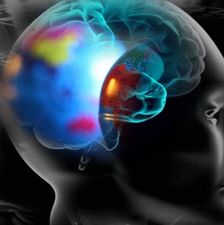 دوزبانهها مغزهای سریعتری دارند
