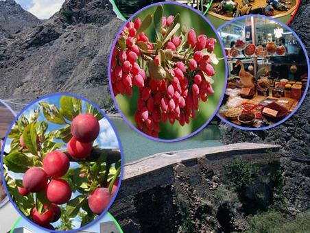 سوغاتیهای استان خراسان جنوبی