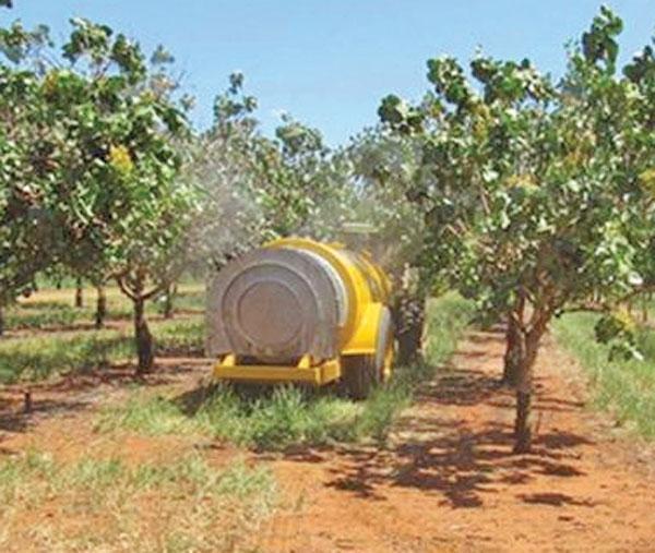 نگرانی مجلس از استاندارد محصولات کشاورزی ادامه دارد