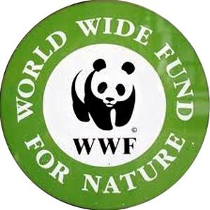 صندوق جهانی طبیعت