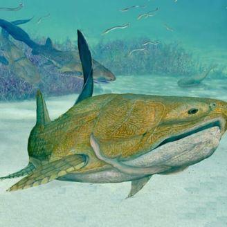 کشف نوعی ماهی اولیه که حدود ۴۱۹ سال زیسته است