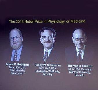 جایزه نوبل پزشکی به دانشمندان آمریکایی و آلمانی تعلق گرفت