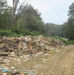 فاجعه شیرابه زباله در جنگلهای هیرکانی