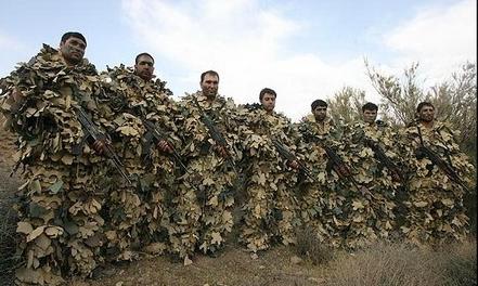 نیروهای ویژه هوابرد ارتش