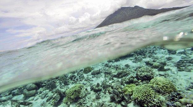 جذب دیاکسیدکربن در دل اقیانوسها