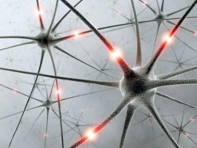مفاهیم: بیماری ALS چیست؟