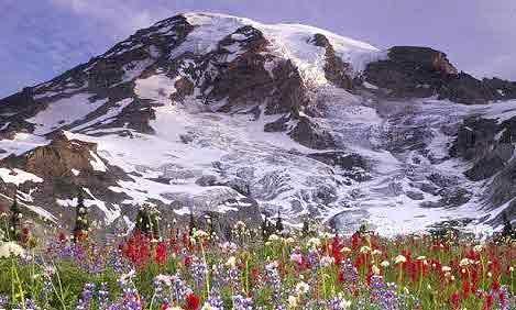 کوه برف