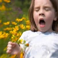 چطور آلرژیهای فصلی را کنترل کنیم؟