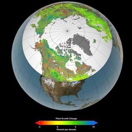 پیامدهای افزایش دما در قطب شمال