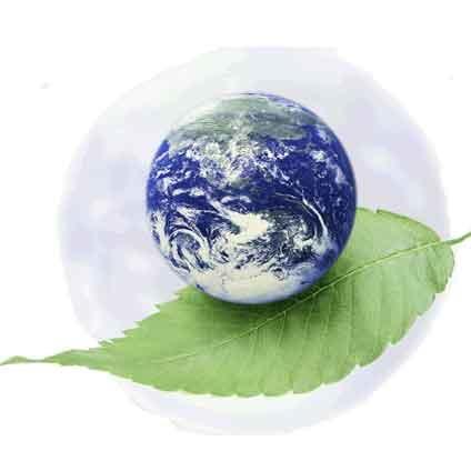 راه اندازی شبکه تلویزیونی محیط زیست