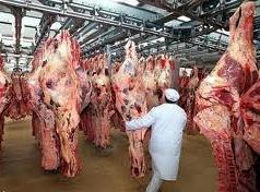 ادامه واردات گوشت قرمز از برزیل