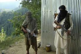 pakistani taliban