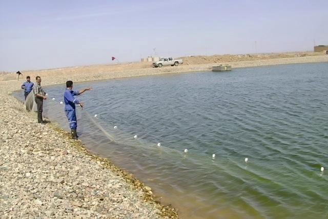 پرورش ماهی در دل کویر یزد
