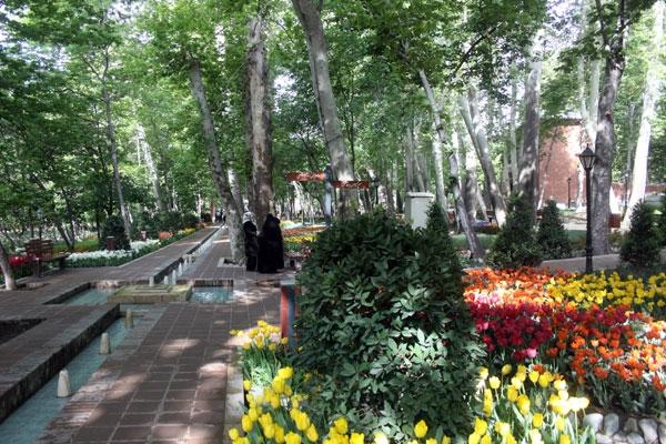 باغ ایرانی میزبان لالهها؛ تصاویر همشهری آنلاین