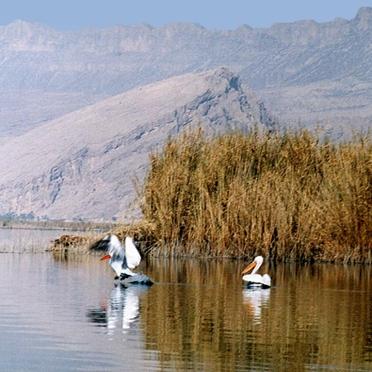 6 تالاب ایرانی در راه ثبت جهانی