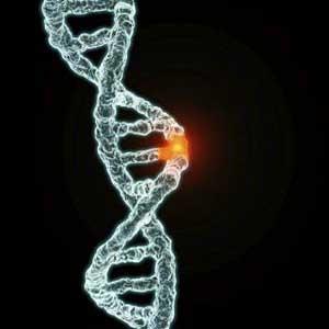 ژن تاخیر در بارداری