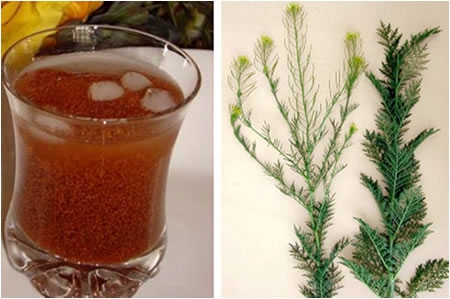 شربت خاکشیر؛ نوشیدنی سنتی فصل گرما