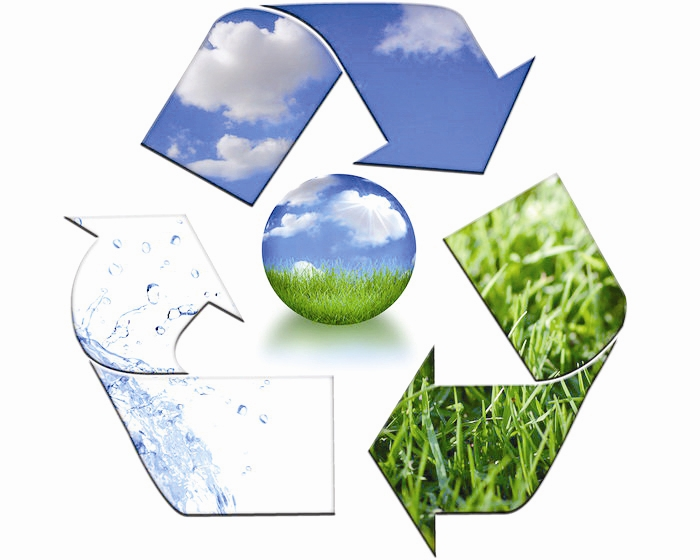 نظام مدیریت سبز در کشور اجرایی میشود