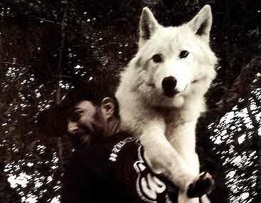 محافظت از سفیر گرگها در خانه