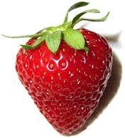 آشنایی با میوه و سبزیجات ضدکلسترول