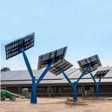 مدرسهای با درختان خورشیدی