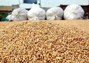 رویترز: ایران نیازهای غذایی مردمش را به هر قیمت ممکن تامین میکند