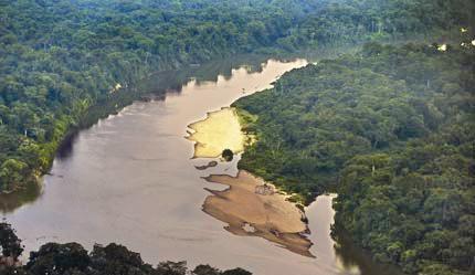 یک و نیم میلیارد هکتار جنگلهای جهان از بین رفتهاند