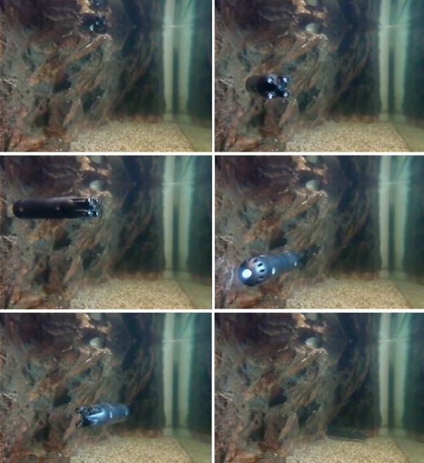 مینیزیردریایی در حال کاوش در زیر آب